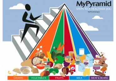 Физичко и здравствено васпитање – исхрана у функцији здравља